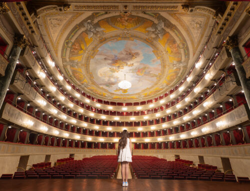 D'incanto: Le vetrofanie del Nuovo Teatro Donizetti – la magia dell'arte teatrale si affaccia sul Sentierone con dodici scatti artistici
